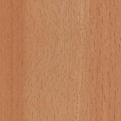 european beechwood